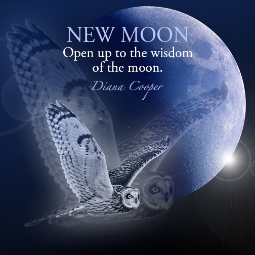 DC Quote 9_NEW MOON_Open up to the wisdom