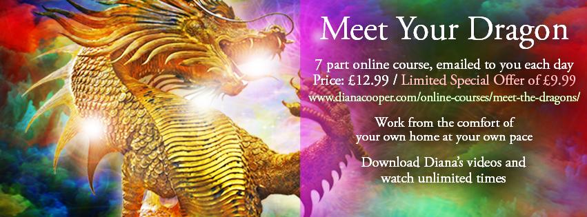 Meet Your Dragon_FB Header
